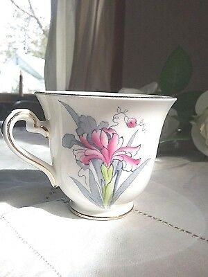 "Beautiful Rosina England Bone China Chintz Tea Cup . # 4954. 3"" tall. Pink&Blue"