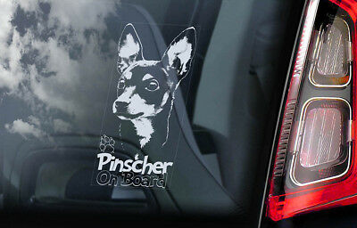 Pinscher on Board - Car Window Sticker - German Deutscher Dog Sign Decal - V02