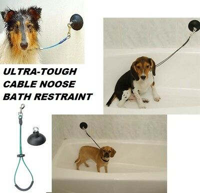 """PRO BATHTUB SUCTION CUP & 21"""" Cable Loop Noose RESTRAINT Pet Dog Cat Grooming"""