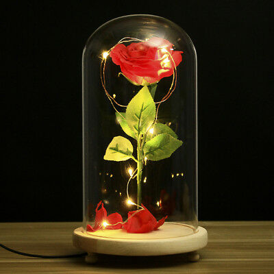 Red Silk Rose Beauty And The Beast Enchanted Flower Gl Dome Valentines Gift