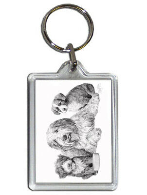 Mike Sibley Bearded Collie & Pups Quality Acrylic Keyring 50mm x35mm - Gift