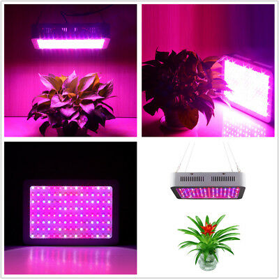1000W 1200W Full Spectrum LED Grow Light Double Chips For Veg Hydro Indoor Plant
