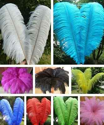 10pcs Real Large Ostrich Feathers For Wedding Decorations 6~8inch Length