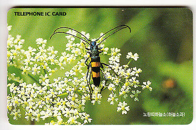 Asie  Telecarte / Phonecard .. Coree Du Sud 5.000W Ic Kt Insecte Chip/puce