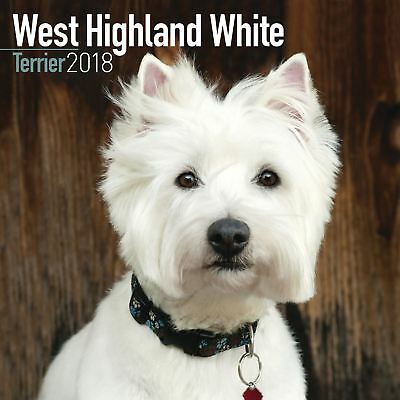 West Highland White Terrier Oficial 2018 Cuadrado calendario de pared