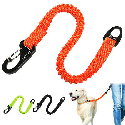Dog Leash Stretch Elastic Bungee Rope Carabiner No Pull Lead for Leash Extend