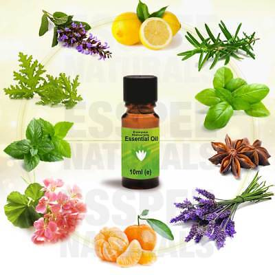 Pure 10 ml essential oil selection for Aromatherapy Home Fragrance Candle Making