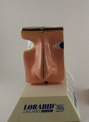 Vintage Advertising Sinuses Nose Medical Model