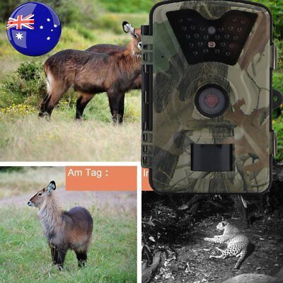 Trail Camera Wireless Farm Security Cam Waterproof Night Vision No Spy Hidden BB