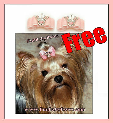 100x PET Puppy grooming dog hair clips Bows Yorkie* 1 FREE Princess DOG Bow