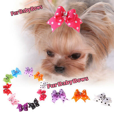 10 Crystal DOT Shih Tzu Dog grooming bows Band Poodle Puppy Bow  Maltese Yorkie
