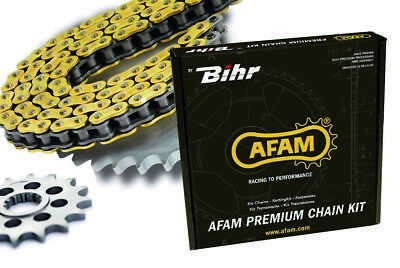 4502028 Chaine de transmission AFAM 520 A520MR2-G or 118 maillons
