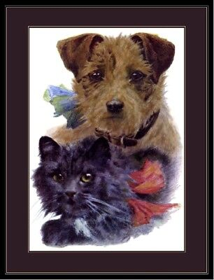 English Print Poster Border Terrier Puppy Dog Dogs Black Kitten Cat Art Picture