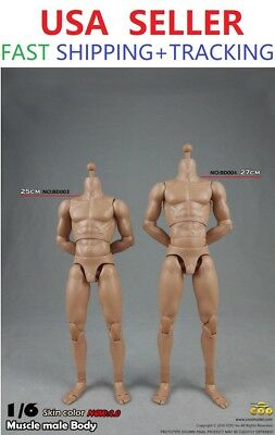 1//6 COOMODEL COO Muscular Male Narrow Shoulders Standard Body BD003 B34003 ❶USA❶