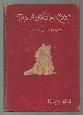 The Angora Cat RARE Antique Cat Breed Book 1898 First Edition Illustrated