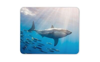 Great White Shark Mouse Mat Pad - Diver Scuba Diving Sharks Gift Computer #8935