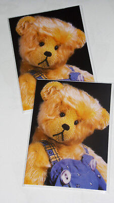 BIRTHDAY CARDS 'MR THEOBALD' X 12, JUST 27p, wrapped, foiled, 1 design, (B186