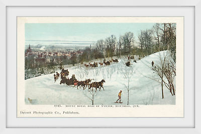 NEW Mt. Royal Road in Winter Framed Print Marmont HIll Wall Art