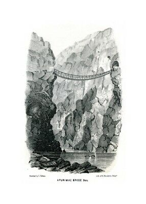 Apurimac Bridge - Peru - Lithographie aus Exploration of the Valley of the Amazo