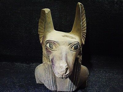 EGYPTIAN ARTIFACT ANTIQUITIES Anubis Jackal Head Dog Bust Statue 2686-2181 BC
