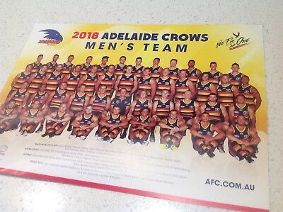 Afl Adelaide Crows Official Team Poster, Brand New, Football Pies Cats Hawks