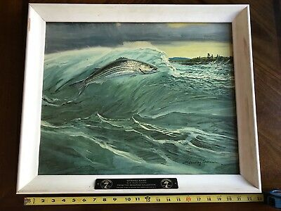 SEAGRAM'S 7 Collection-Striped Bass-by W. GOADBY LAWRENCE Canvas Print Art