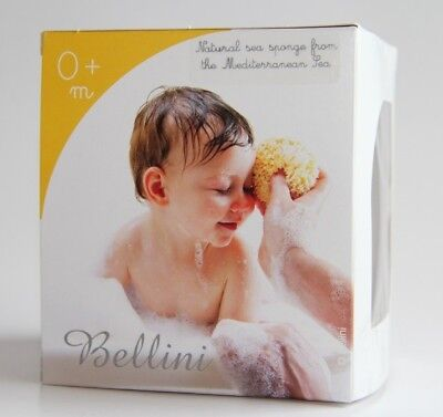 Spugnificio Bellini sponge natural nr.12
