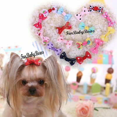10x PET Puppy grooming Dif Girl bows with Alligator clips Maltese hair Yorkie