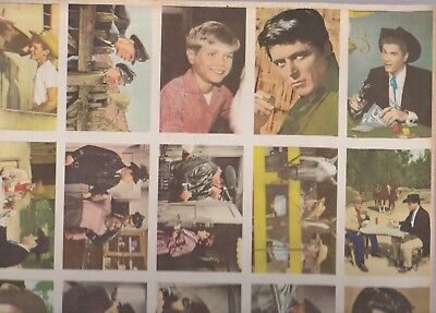 Uncut Sheet Of 25 1950'S/60'S Tv Shows-Perry Mason, Maverick,Lassie-From Germany