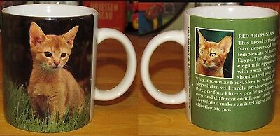 RED ABYSSINIAN CAT Cup / Mug with Breed Description KITTEN