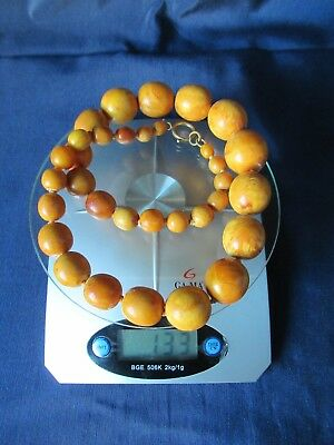 NICE OLD Baltic Amber Necklace Butterscotch Big Large Beads 133 grs.
