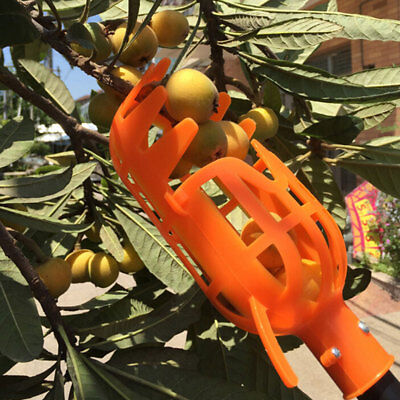 Plastic Fruit Picker Gardening Picking Tool Useful Safety PP Without Pole