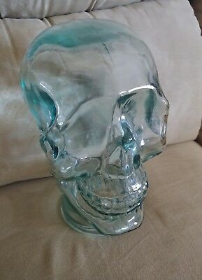 "11"" Clear Glass Head Wig.used As Halloween Lantern Or Art Display."