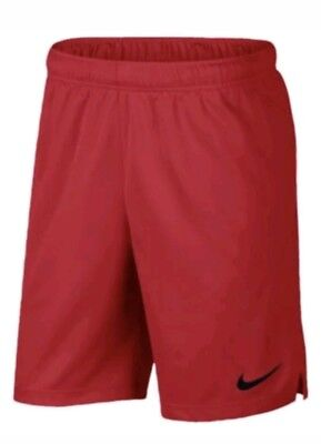 NIKE EPIC MEN/'S TRAINING SHORTS SIZE LARGE NWT 897155 492