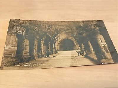 Early 1900s Real Photo Postcard The Avenue Christchurch Priory Gardeners Working