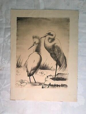"Original Drawing Birds interesting Signature 11""x15"""