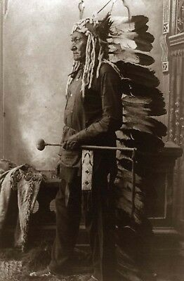 A4 laminated - Native American Indian Portrait Sitting Bull 2  posters