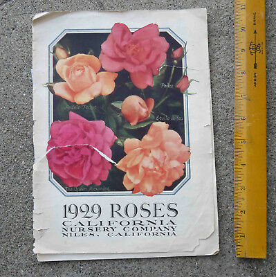 Vintage 1929 Roses Catalog California Nursery Company Inc Niles California