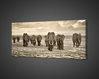 Walking Herd Of Elephants Africa Canvas Print Wall Art Picture Photo