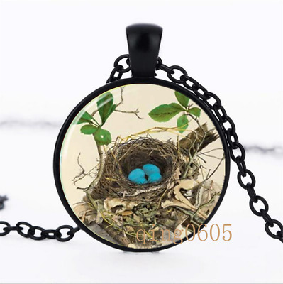 Robin's Nest Art Bird photo Glass Dome black Chain Pendant Necklace wholesale