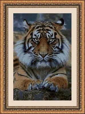Kit De Punto De Cruz Panda, Cross Stitch Kit Animales 30076