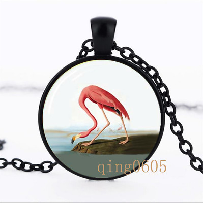 Flamingo necklace photo Glass Dome black Chain Pendant Necklace wholesale