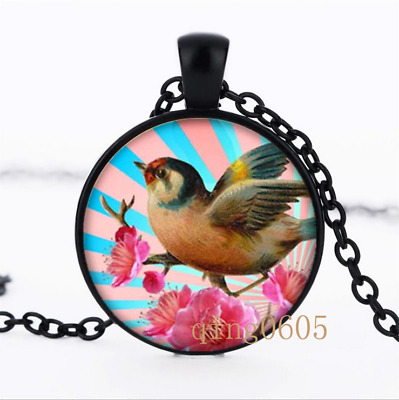 Little Bird Resin Art photo Glass Dome black Chain Pendant Necklace wholesale