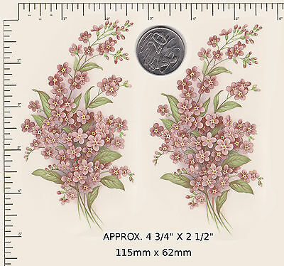 """2 x Ceramic decals Mulder Holland Pink Forget-me-nots 4 3/4"""" x  2 1/2"""". PD70b"""