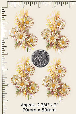 """4 x Waterslide ceramic decals White daisies w. wheat Approx. 2 3/4"""" x  2""""  PD36a"""