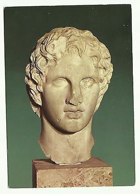 Acropolis Museum, Head of Alexander the Great, Athens, Greece postcard