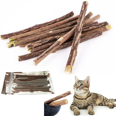 Natural Matatabi Silvervine Dental Fun Sticks Cat Nip Chew Toy Teeth Cleaning Uk