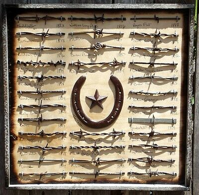 Rustic Antique Barbed Wire Display 32 Wire Framed Collection