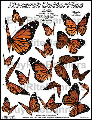 18 Monarch Butterfly Decal, Stickers Laminated, High Quality