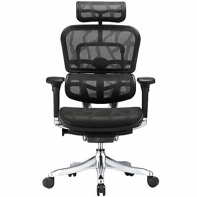 NEW Ergohuman V2 Plus Deluxe Mesh Office Chair - Milan Direct,Office Chairs